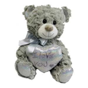 Mr Grey Bear