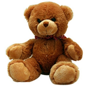 Brown Teddy Bear 30cm