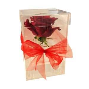 Acrylic boxed rose