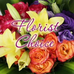 Florist Choice starting from