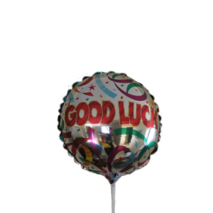 Good Luck 9inch air balloon on a stick