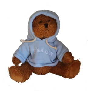 It`s a boy jointed Hoodie bear