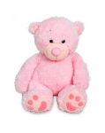 Pink Teddy Bear 20 cms